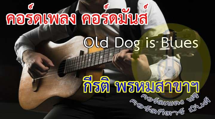 เนื้อร้อง เพลง Old Dog is Blues:                                           ฉันเหมือนเป็นหมาที่เห่าไม่ดัง                                ไม่มีความหลัง ไม่มีความหน้า                           ไม่มีรอยยิ้ม ไม่มีน้ำตา                       ท่องอยู่ใต้ฟ้าเดียวดาย                            ถึงฉันเป็นหมาที่เห่าไม่ดัง                   อยู่เพียงลำพ