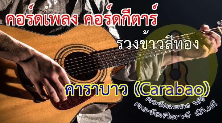 INTRO:   รวงข้าวสีทองส่องแสงสัจธรรม  รวงข้าวน้อมนำมวลชนอิ่มกาย  น้ำพักน้ำแรงสำแดงพลังยิ่งใหญ่  เพื่อไทยเป็นไทย มิใช่ทาสใคร  เกี่ยวใจหนุ่มสาวด้วยรวงข้าวสีทอง
